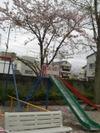 Scimg8346